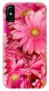 Pink Gerbera Daisies IPhone Case