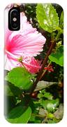 Pink Java Flower  IPhone Case