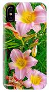 Pink Lilies Near Ottawa-on IPhone Case