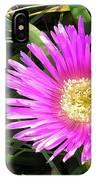 Pink Mesembryanthemum  IPhone Case