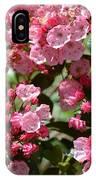 Pink Umbrellas IPhone Case