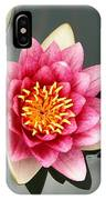 Pink Waterlily And Cloud Reflection IPhone Case