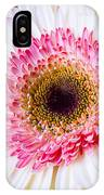Pink White Daisy IPhone Case
