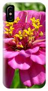 Pink Zinnia IPhone Case