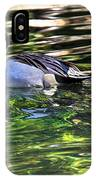 Pintail IPhone Case