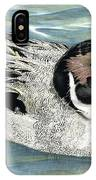 Pintailed Elegance IPhone Case