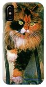 Pirate Kitty IPhone Case