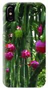 Pitaya Fruit Trees IPhone Case
