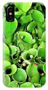 Pitcher Plants Palm Springs IPhone Case