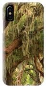 Plantation Oak Trees IPhone Case