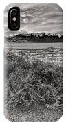 Plants On The Alvord Desert IPhone Case