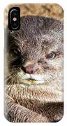 Play Time For Otters IPhone Case