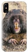Pocket Gopher Chatting IPhone Case