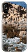 Point Lobos Coast 2 IPhone Case