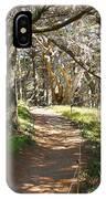 Point Lobos Cypress Path IPhone Case