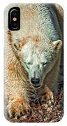Polar Bear IPhone Case