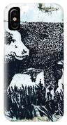 Polled Hereford Bull 26 IPhone Case
