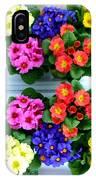 Polyanthus Primroses IPhone Case