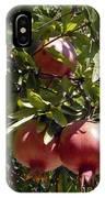 Pomegranate Tree  IPhone Case
