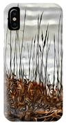 Ponce Inlet Lighthouse In Sea Grass IPhone Case