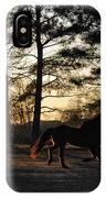 Pony's Evening Pasture Trot IPhone Case