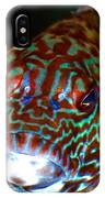 Poopaa Hawaiian Hawk Fish IPhone Case