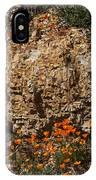 Poppies And  Rocks IPhone Case