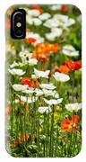 Poppy Fields - Beautiful Field Of Spring Poppy Flowers In Bloom. IPhone Case