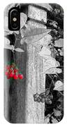 Porch Post Berries Color Punch IPhone Case