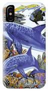 Porpoise Reef IPhone Case
