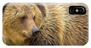 Portrait Of A Grizzly IPhone Case