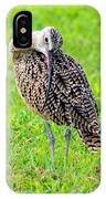 Preening Curlew IPhone Case
