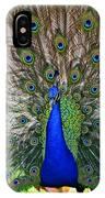 Pretty As A Peacock IPhone Case