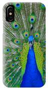 Pretty Peacock IPhone Case