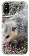 Pretty Possum IPhone Case