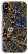 Pretty Pretty Possum Iv IPhone Case