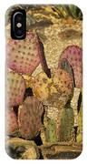 Prickly Pear Cactus Dsc08545 IPhone Case
