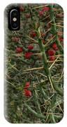 Prickly Pete Cactus IPhone Case