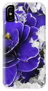 Primulas In The Snow IPhone Case