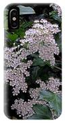 Privet Blossoms 2 IPhone Case