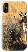 Pronghorn Buck IPhone Case