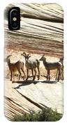 Pronghorn Deer IPhone Case