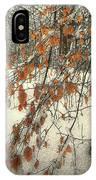Prospect Park Winter Scene IPhone Case
