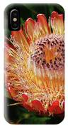 Protea Flower 2 IPhone Case