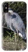 Pround Blue Heron IPhone Case
