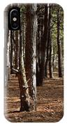 Provin Trails Park Forest IPhone Case