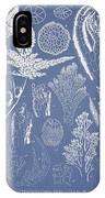 Pterosiphonia Fibrillosa IPhone Case