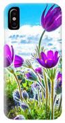 Pulsatilla Vulgaris Flowers IPhone Case