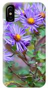 Purple Asters IPhone Case