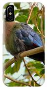 Purple-crested Touraco IPhone Case